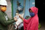 Semen Gresik berkomitmen turunkan angka kematian ibu dan bayi