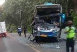 Bus Sumber Selamat terlibat kecelakaan dengan Bus Mira  di Ngawi