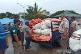 SKIPM Baubau tolak komoditas cacing laut tidak miliki dokumen