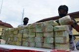 POLDA ACEH DAN BEA CUKAI GAGALKAN PEREDARAN  NARKOTIKA. Personil Polda Aceh menata barang bukti tindak kejahatan narkotika jenis sabu dan ganja  saat gelar kasus di Banda Aceh, Aceh, Rabu (7/4/2021). Polda Aceh bersama Bea Cukai menggagalkan sebanyak 50 kilogram sabu jaringan internasional dan sebanyak 194 kilogram paket ganja siap edar  serta mengamankan 10 tersangka. ANTARA FOTO/Ampelsa.