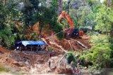 Tambang emas liar di Aceh Barat tak kunjung ditutup
