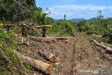 Pegawai mitra Perhutani mengangkut kayu bundar jati di Resort Pemangkuan Hutan (RPH) Gadung, Banjar Utara, Jawa Barat, Kamis (8/4/2021). Perum Perhutani Kesatuan Pemangkuan Hutan (KPH) Ciamis telah melaksanakan Pengelolaan bidang produksi kayu bersertifikat standar internasional Forest Stewardship Council (FSC) pada tahun 2021 sebanyak 25.995 meter kubik dengan luas tebang habis kayu mencapai 322,93 hektare dan tebang pemeliharaan seluas 444,42 hektare dari total 767.35 hektare di wilayah KPH Ciamis. ANTARA JABAR/Adeng Bustomi/agr