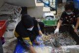 Kadin mendukung Lombok jadi pusat budidaya lobster