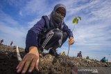 Seorang Mahasiswi menanam bibit pohon saat kick off Rehabilitasi Hutan dan Lahan (RHL) APBN 2021 dan penanaman satu juta pohon se-Kalsel di kawasan RTH Embung Lok Kudat, Banjarbaru, Kalimantan Selatan, Jumat (9/4/2021). Pemerintah Provinsi Kalimantan Selatan kembali menggalakkan program menanam satu juta pohon di Kalimantan Selatan sebagai upaya pelestarian lingkungan dan mitigasi bencana. Foto Antaranews Kalsel/Bayu Pratama S.