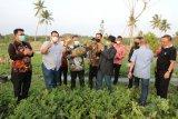 Gubernur apresiasi kebun edukasi Lampung Selatan