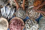 KKP ajak masyarakat konsumsi ikan penuhi asupan protein saat puasa