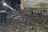 Tragis! pasang lampu hias jalan, warga di Loteng tewas kesetrum