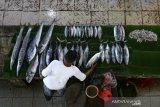 Pedagang menata ikan laut yang dijajakan di pasar tradisional Peunayong, Banda Aceh, Aceh, Sabtu (10/4/2021). Menurut pedagang menjelang tradisi hari pemotongan hewan peliharaan (meugang) dan bulan Ramadhan persediaan ikan segar mulai berkurang karena para nelayan mulai libur melaut . Antara Aceh/Irwansyah Putra.