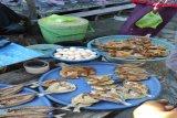 BKSDA Sulsel akan cek penjualan telur penyu di Kabupaten Majene