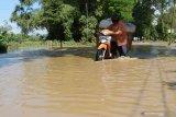 Warga mendorong sepeda motor yang mogok saat melintasi jalan yang terendam banjir di Kwadungan, Ngawi, Jawa Timur, Minggu (11/4/2021). Banjir Sungai Madiun merendam sejumlah desa di wilayah tersebut mengakibatkan sejumlah ruas jalan dan puluhan hektare sawah yang memasuki musim tanam padi terendam. Antara Jatim/Siswowidodo/zk.