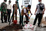 Kepala BNPB tinjau realisasi program vegetasi di pantai Pariaman untuk mitigasi tsunami
