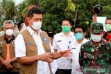 Begini pentingnya membangun mitigasi berbasis vegetasi antisipasi tsunami, menurut Kepala BNPB