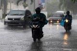 BMKG prakirakan sejumlah provinsi ini akan diguyur hujan lebat disertai kilat/petir dan angin kencang