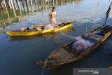 KNTI survei kendala akses BBM subsidi bagi nelayan kecil di Bintan