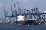 BPS: Surplus neraca perdagangan Indonesia pada Mei tertinggi selama 2021