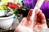 PWI-Alodokter edukasi pentingnya air minum terstandarisasi