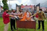 Barang bukti berupa 19 paket besar ganja  dibakar Polres Pasaman (Video)
