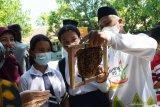 Pawang lebah menjelaskan kepada murid SD tentang budi daya lebah saat memindahkan koloni lebah madu yang bersarang secara liar di kotak