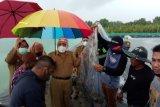 Bupati Buol:  Budidaya udang vaname dilakukan dengan pola padat karya