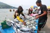 KKP:menyatakan Kami tidak mungkin memanipulasi harga patokan ikan