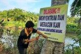 Cegah konflik dengan buaya, Pemuda Masang Timur pasang spanduk larangan menyentrum ikan