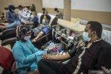 PMI Makassar kumpulkan 218 kantong darah di Masjid Al Markaz Jenderal. M Jusuf