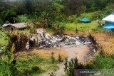 TNI siap menangkap seluruh anggota kelompok bersenjata di Papua