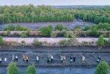 4.617 hektare lahan mangrove di Kepri akan direhabilitasi