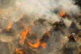 Gelombang kedua COVID-19 di India mutlak dihindari (Indonesia)