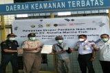 Sulawesi Tenggara ekspor ikan hias 2.236 ekor ke Brunei Darussalam