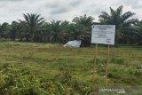 Bupati Mukomuko Sapuan bersama Kejari Rudi Iskandar dan Kadis Perkim meninjau langsung lokasi yang akan dibangun untuk alun-alun dan perumahan Kejaksaan Negeri Mukomuko di lahan seluas sekitar 10.816 M2 yang berlokasi tak jauh dari komplek perkantoran Pemkab Mukomuko. (ADV)