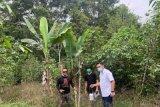 Penelitian awal gempa bumi Samosir digagas bersama BMKG-USK-Aceh Besar