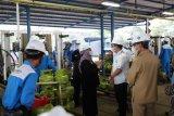 Bupati Sleman: Pertamina mencukupi kebutuhan LPG dengan baik