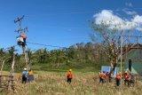 PLN telah pulihkan kelistrikan di Nusa Tenggara Timur