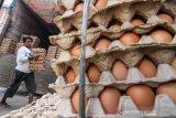 Harga Telur Ayam Naik Jelang Lebaran