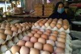 Dinas Ketahanan Pangan Sulsel gelar pasar murah menjelang Idul Fitri