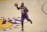 Lakers berharap LeBron kembali bugar demi playoff NBA