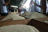 Bulog Kalteng pastikan stok beras aman sampai usai Lebaran