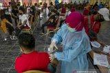Dinkes Sulteng: 83.338 orang  telah mengikuti vaksinasi COVID-19