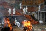 Virus corona varian India yang mencemaskan dunia