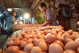 Pemkot jamin kecukupan bahan pangan untuk Lebaran di Palangka Raya
