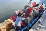 Buruh angkut kapal motor melakukan bongkar muat sembako di Pelabuhan Kalbut, Mangaran, Situbondo, Jawa Timur, Sabtu (8/5/2021). Distribusi sembako untuk warga kepulauan di Madura aman, lancar dan meningkat dari bulan sebelumnya saat masa larangan mudik Lebaran 2021. Antara Jatim/Seno/zk