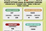 Kasus positif COVID-19 di Lampung bertambah 44