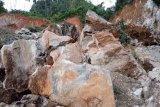 Polda selidiki kasus longsor tambang  emas ilegal di Solok Selatan