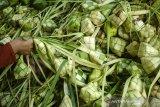 Warga menata anyaman Kupat (ketupat) di Blok Kupat Caringin, Bandung, Jawa Barat, Selasa (11/5/2021). Setiap tahun jelang lebaran Idul Fitri tiap warga di kampung tersebut memproduksi sedikitnya 15 ribu pesanan anyaman ketupat untuk dijual kembali di pasar tradisional dan modern dengan kisaran harga Rp500 hingga Rp1000 per anyaman ketupat atau Rp3000 hingga Rp5000 untuk anyaman ketupat yang telah berisi beras maupun ketan. ANTARA JABAR/Novrian Arbi/agr