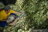 Warga mengisi anyaman Kupat (ketupat) dengan beras di Blok Kupat Caringin, Bandung, Jawa Barat, Selasa (11/5/2021). Setiap tahun jelang lebaran Idul Fitri tiap warga di kampung tersebut memproduksi sedikitnya 15 ribu pesanan anyaman ketupat untuk dijual kembali di pasar tradisional dan modern dengan kisaran harga Rp500 hingga Rp1000 per anyaman ketupat atau Rp3000 hingga Rp5000 untuk anyaman ketupat yang telah berisi beras maupun ketan. ANTARA JABAR/Novrian Arbi/agr
