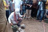 Pemerintah bangun 300 unit rumah untuk korban Seroja di Flores Timur