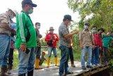 'Hauling Road' PT BNJM jadi sumber pengganggu Sungai Tewah di Bartim