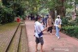 Kebun Binatang Bandung mulai ramai wisatawan pada  H+1 Lebaran
