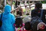 Seribuan wisatawan mengunjungi Gembira Loka Zoo pada hari H+2 Lebaran
